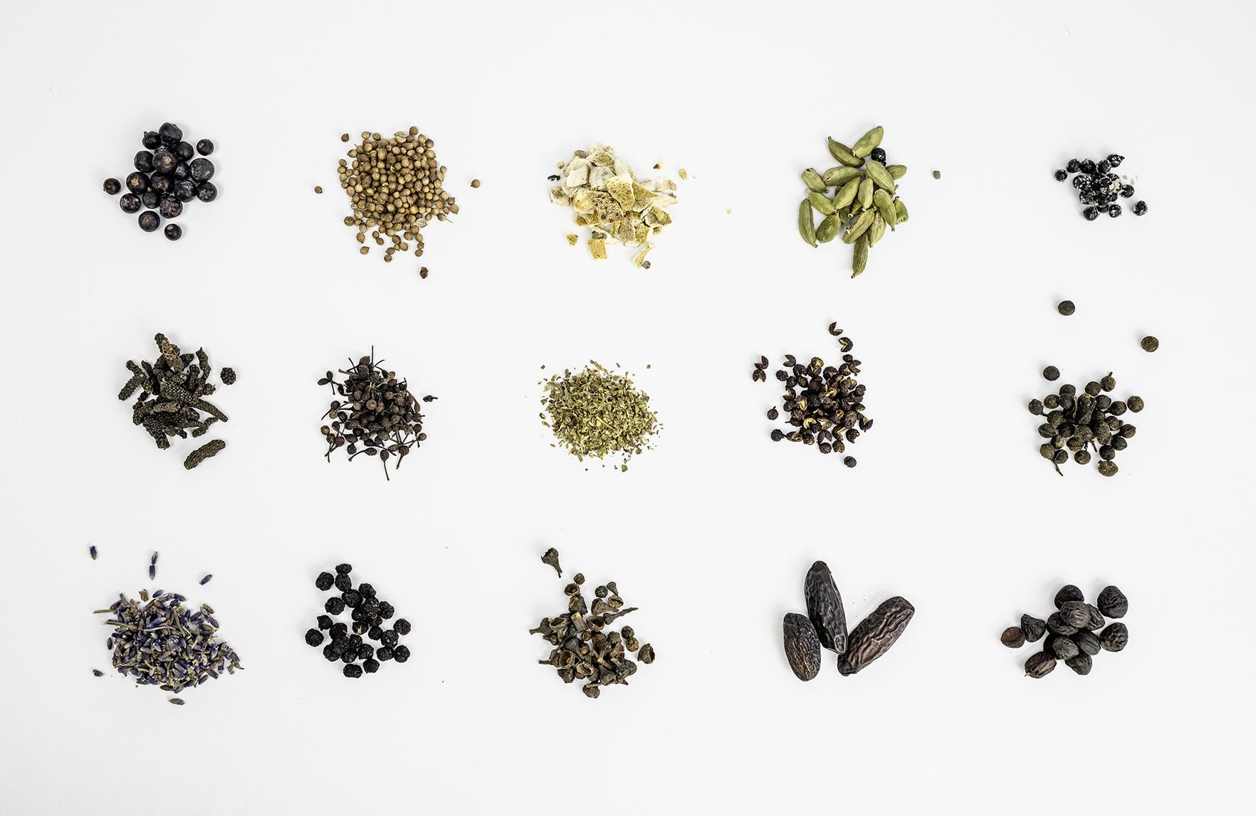 Spice for Life. Mach deinen Gin